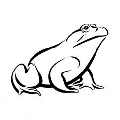 line art graphic image bull frog