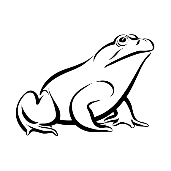 Line Drawing Frog : Bullfrog coloring page pages