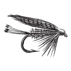 scratchboard graphic image dry fly