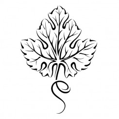 line art graphic image grape leaf