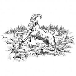 line art animals mountain goat