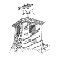line art landscape buildings weather vane