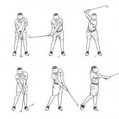 pen and ink sports golf swing series