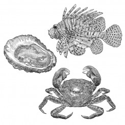 stipple animals seafood crab oyster lionfish
