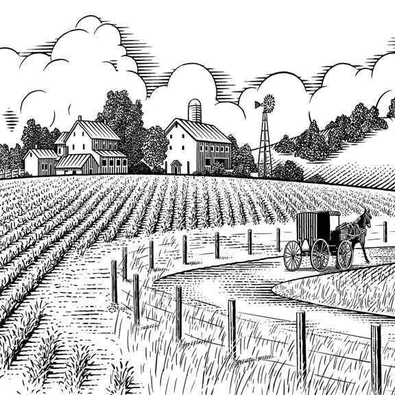 Line Drawing Landscape Artists : Pen ink illustrations line art keithwitmer