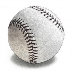 stipple sports baseball
